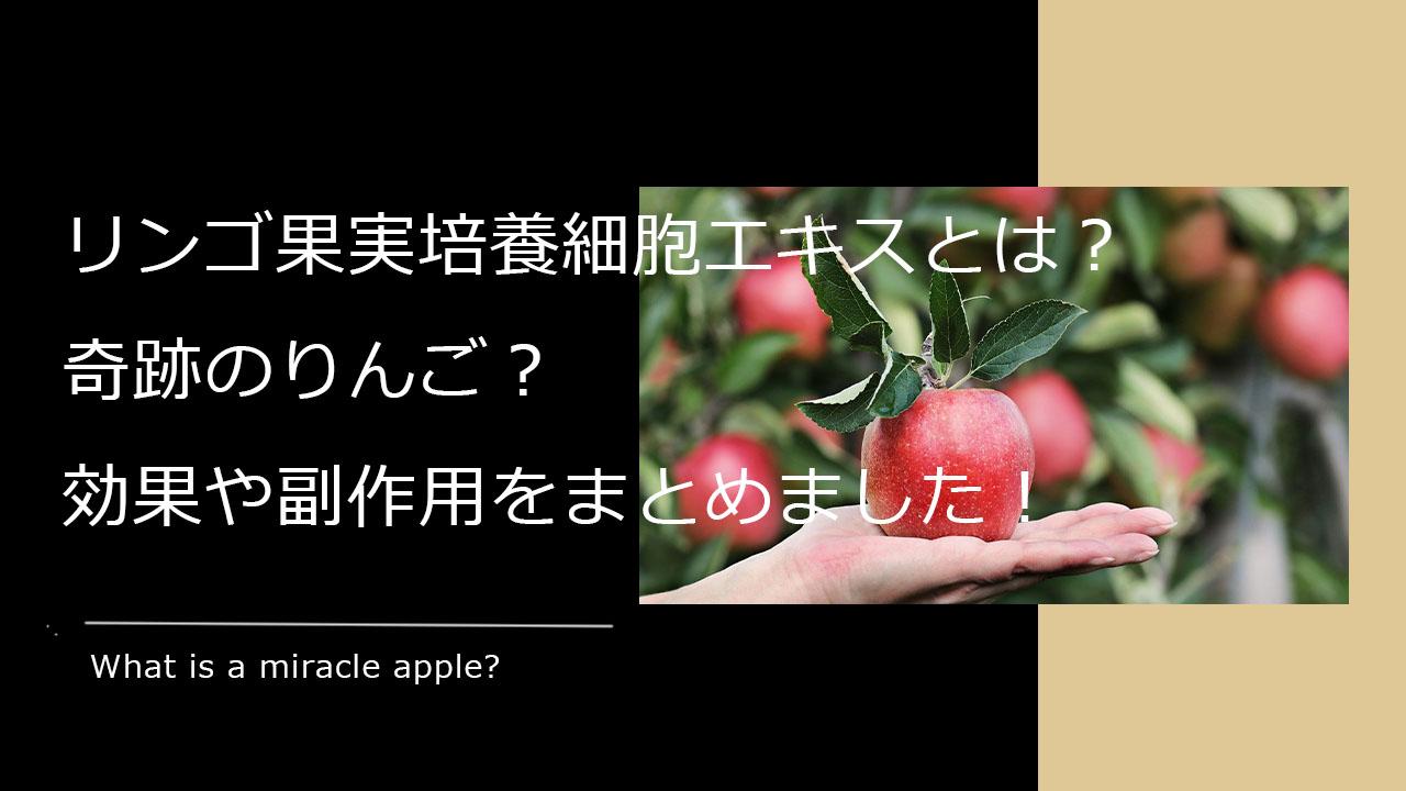 リンゴ果実培養細胞エキスとは?奇跡のリンゴ?効果や副作用をまとめました!